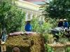 agew-na-pangasinan-2012-16