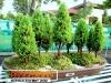 bonsai-exhibit-2012-12
