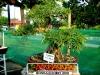 bonsai-exhibit-2012-14