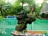 bonsai-exhibit-2012-17