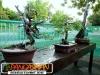 bonsai-exhibit-2012-19
