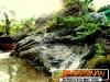 bonsai-exhibit-2012-4