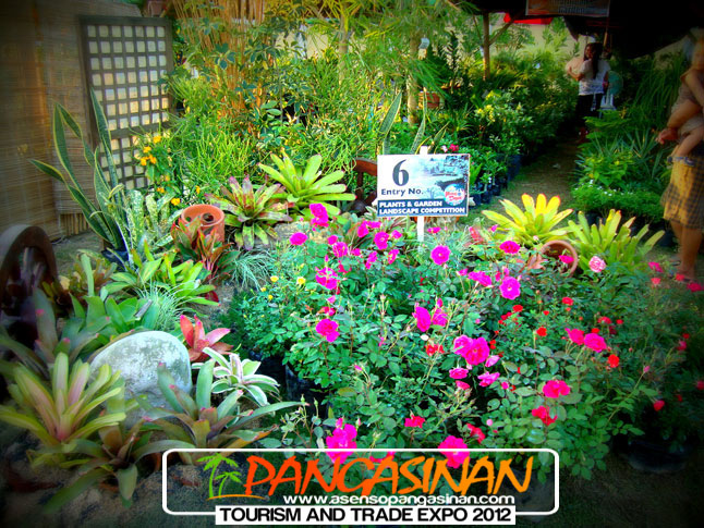Landscape Garden Training : Location pangasinan training and development center ptdc compound