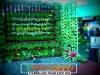 plants-and-garden-landscape-competition-1