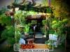 plants-and-garden-landscape-competition-13