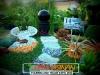plants-and-garden-landscape-competition-14