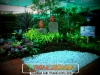 plants-and-garden-landscape-competition-2