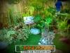 plants-and-garden-landscape-competition-4