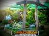 plants-and-garden-landscape-competition-7