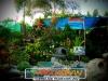 plants-and-garden-landscape-competition-8