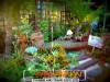 plants-and-garden-landscape-competition-9