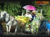 sigya-festival-civic-parade-and-street-dancing-3