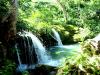 tara-falls_3