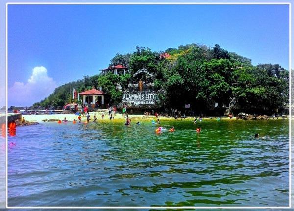 Governors Island Swim