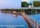 Bangrin Mangrove Farm (Marine Protected Area)